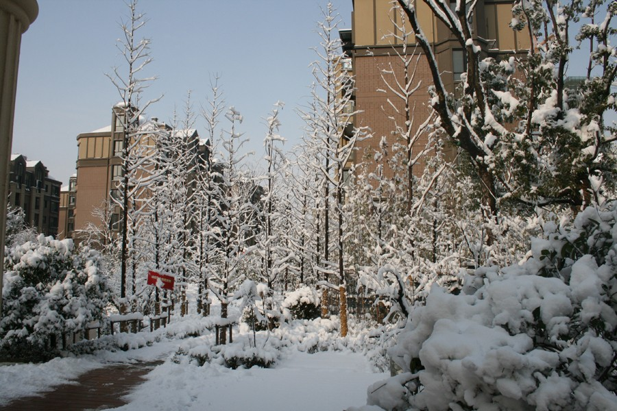 蚌埠绿地世纪城雪景实拍 快来享酷爽夏日