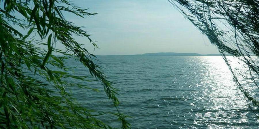 桐城嬉子湖申报*湿地公园专家评估工作展开