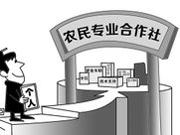 阜阳市农民专业合作社达7684家 较2014年底增长了13%