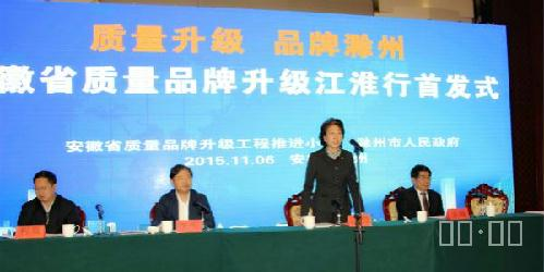 安徽省质量品牌升级江淮行*式在滁举行