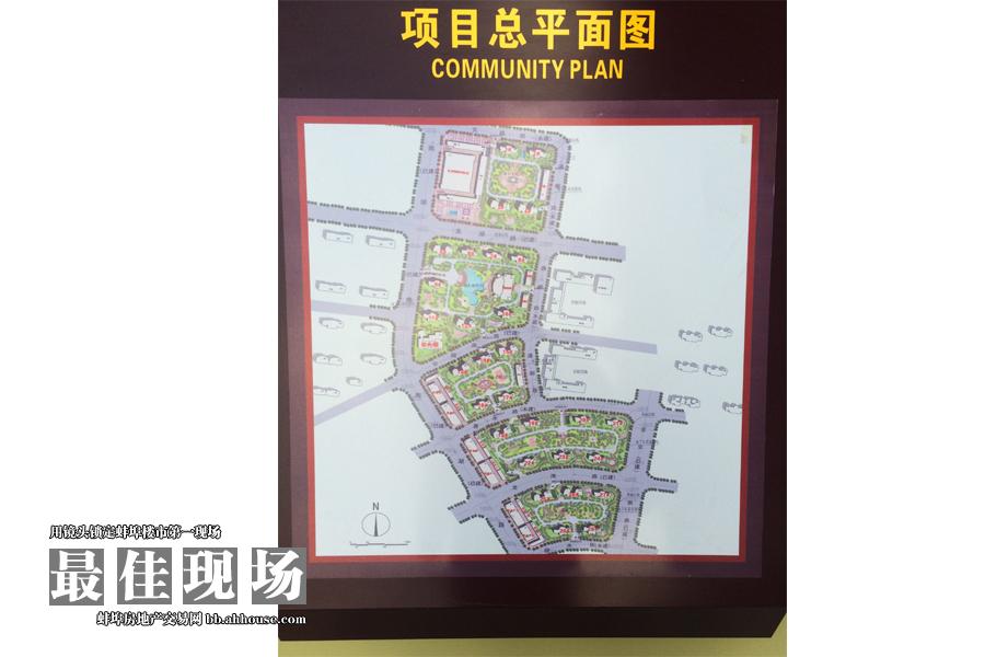 项目总平面图展示区