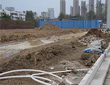 柳林路11月最新工程进度  颍州南路段绿化带铺设中