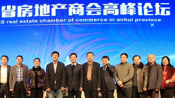 安徽省房地产商会年会 共话新年行业新走向