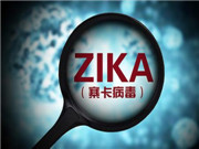 六安市具备寨卡病毒检测能力 三个半小时可出结果