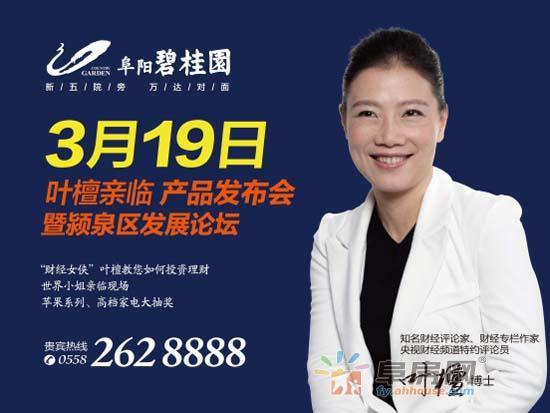 3月19日财经女侠叶檀论道阜阳新城心图片