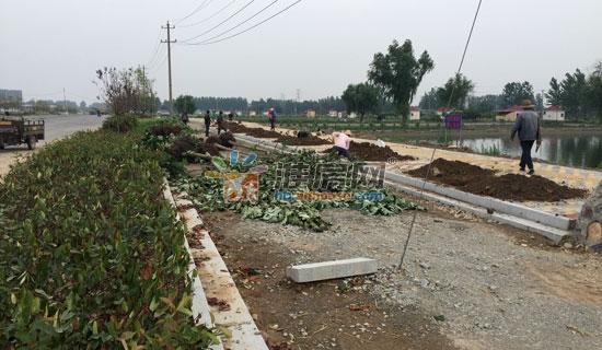 善的绿化工程(图片来源:淮北房地产交易网)-淮北城建开外挂
