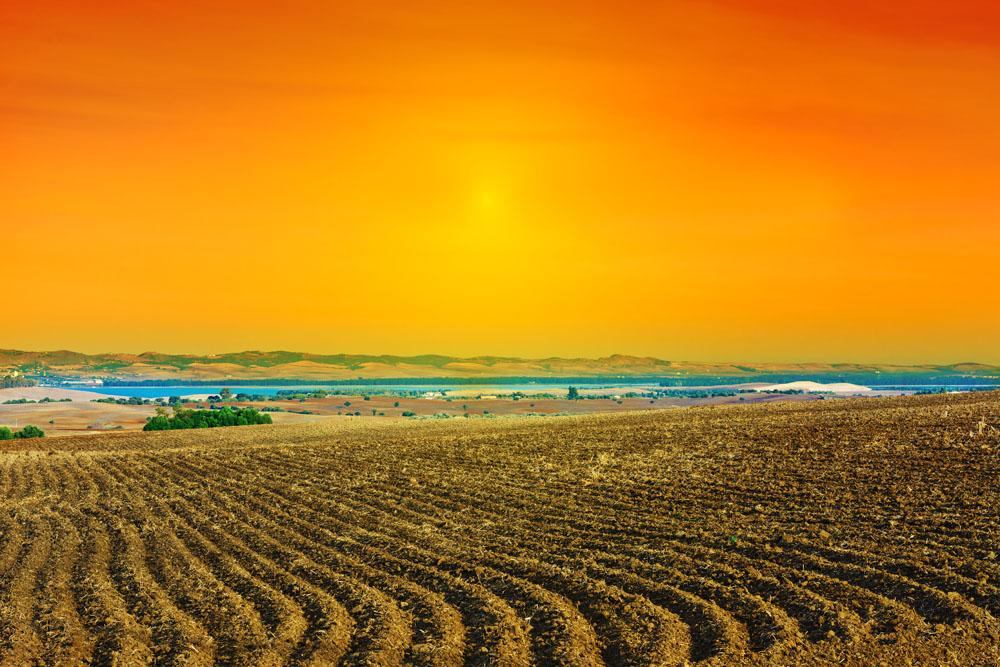 农垦国有土地直接纳入不动产登记 将不设过渡期