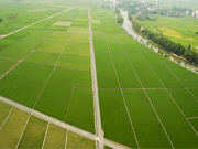 50城土地均价创新高 土拍市场有望逐渐回归理性