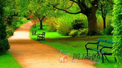 【栢悦南山】置地20年感恩礼献  6月启幕黄山