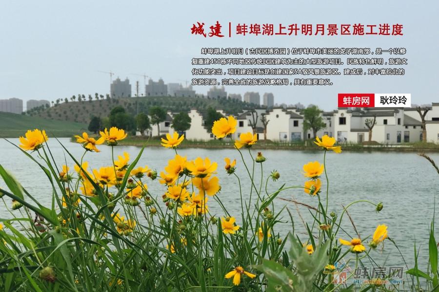 风景这边独好!蚌埠湖上升明月景区进度实拍
