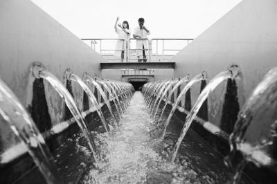 镇江日供水量48.6万吨 已达夏季高峰供水极值