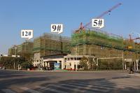 三巽公园墅11月工程进度:部分洋房封顶