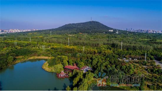 20171207世茂国风湖山里中国软文869.png