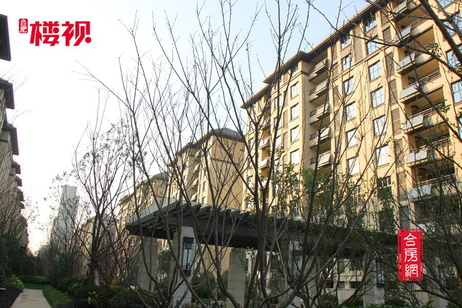 【华润桃源里】小区实景图赏析