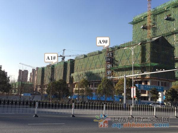 A1#、A9#主体工程