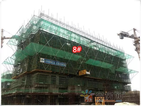 8#八层顶板砼浇筑完成.jpg