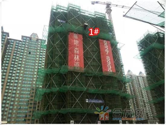 1#二十层墙柱钢筋正在安装_副本.jpg