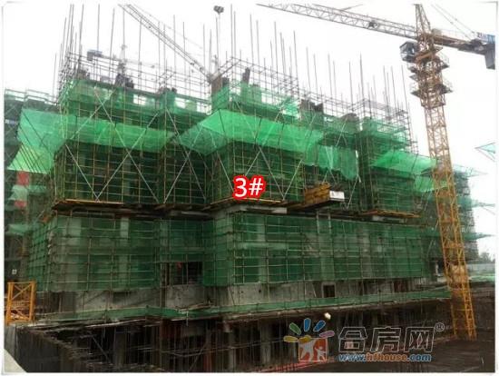 3#六层墙体钢筋正在安装.jpg
