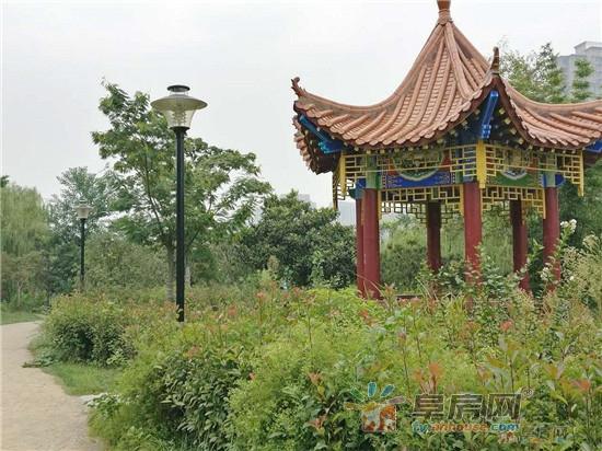 清河公园.jpg