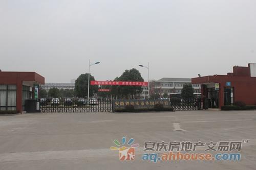 攻略 安庆东部新城两大热盘 精装VS毛坯 该怎么选
