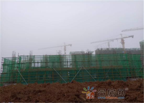 0312望江台官微工程进度231.png