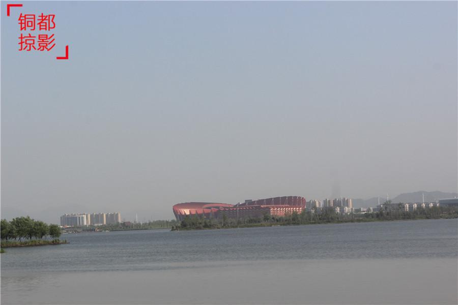 漫步滨江公园 独享初夏的那一份安逸与恬静