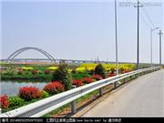 安徽省交通运输厅一行到舒茶镇调研农村道路建设