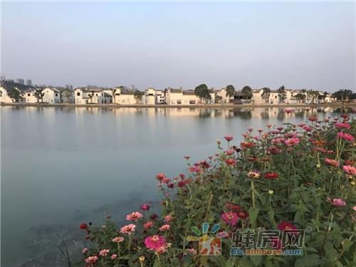 蚌埠古民居博览园
