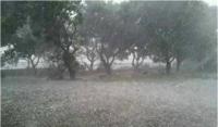 """新一轮强降雨来袭 淮河防总部署应对""""防大汛"""""""