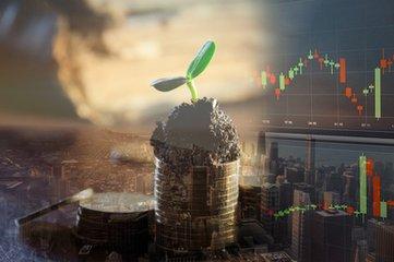 中弘逾期债务 控股股东100%股份被轮候冻结