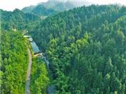"""六安金安区近4万贫困户受益""""江淮果岭""""建设"""