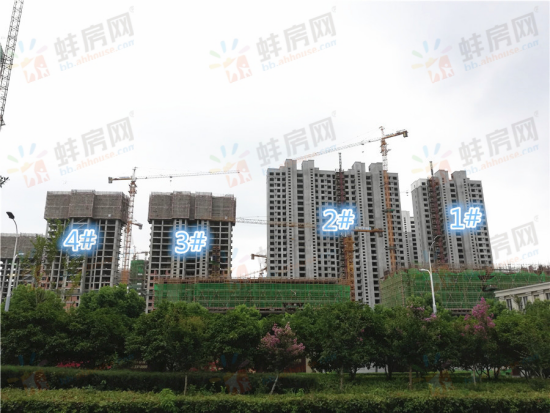 <a href='http://newhouse.bb.ahhouse.com/4892/' target='_blank' style='color:red;text-decoration:underline;'>智慧锦城</a>看房日记7月5622.png
