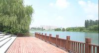 7305亩!相当于10个双清湾 阜阳又一大型公园开放!