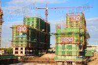 汀海壹品:9月工程进度 B1#楼已建至12层