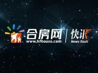 肥西华南城紫荆名都四期备案480套房 均价1.01万/㎡