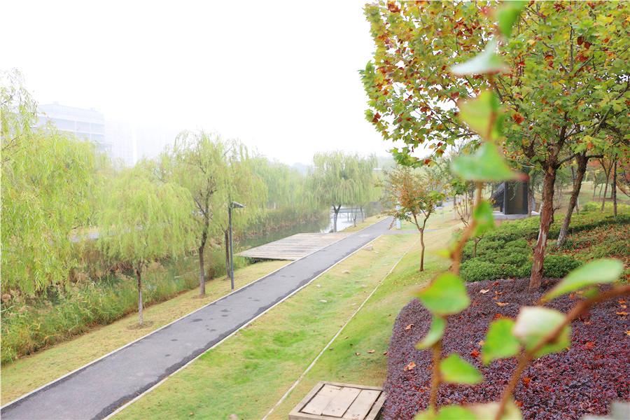 修身养性的天然健身馆——芜湖中央公园悠闲自在