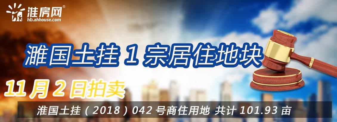 淮房网直播|濉溪县南部百善镇101.93亩其他商服用地正在拍卖