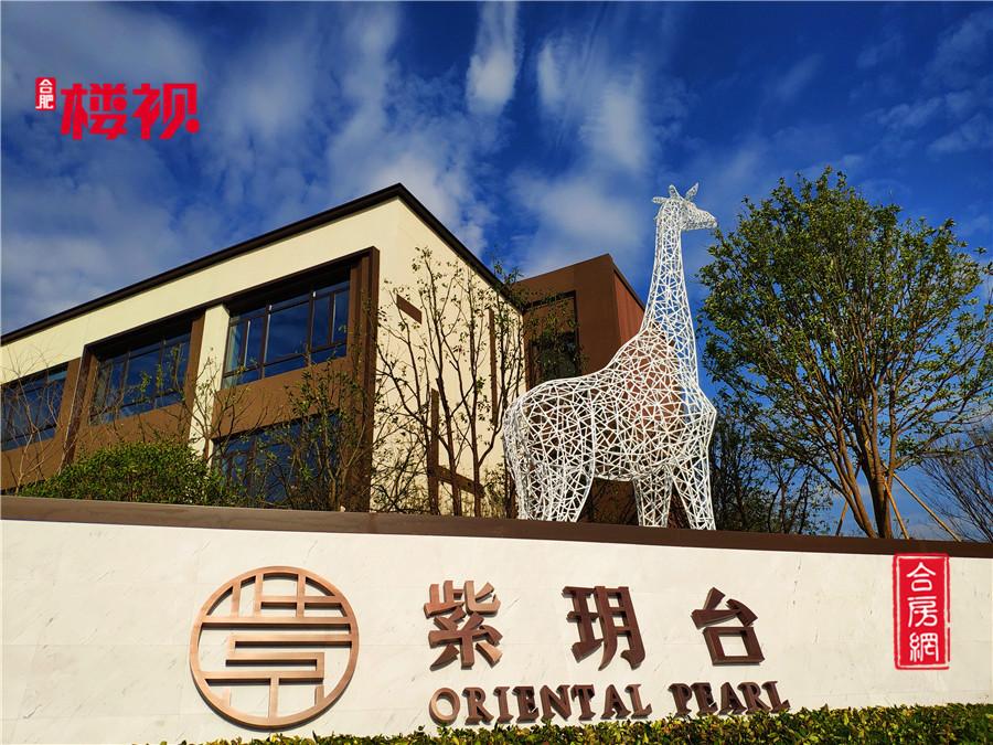 11月10日,随着紫玥台东城轻奢示范区的正式启幕