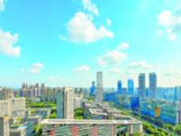 圆梦新区:围绕主导产业招商 引资引进配套产业