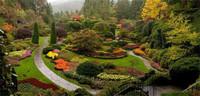 【融侨·天越】|微观园林 尽享360°美景