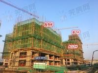 汀海壹品:12月工程进度 A12#楼建至7层