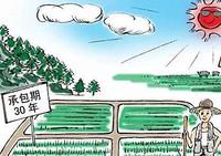 新農村土地承包法:農民進城落戶不得隨意收回土地