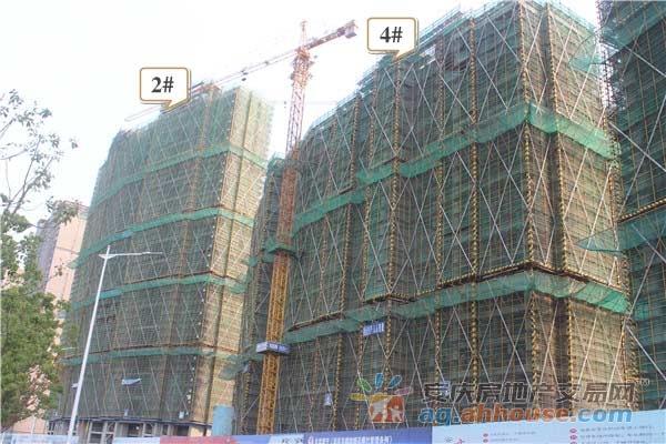 B区2#4#主体建设