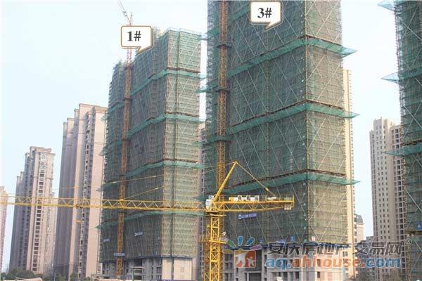 B区1#3#主体建设