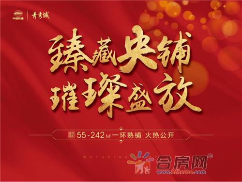 180516 中国铁建 青秀城 商业软文加推258.png